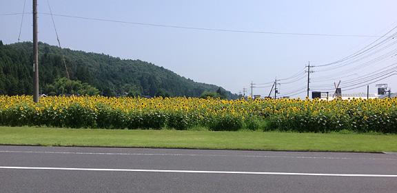 2013_0815道の駅向かい ひま
