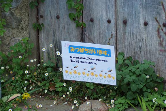 2013_0527_120747-1.jpg