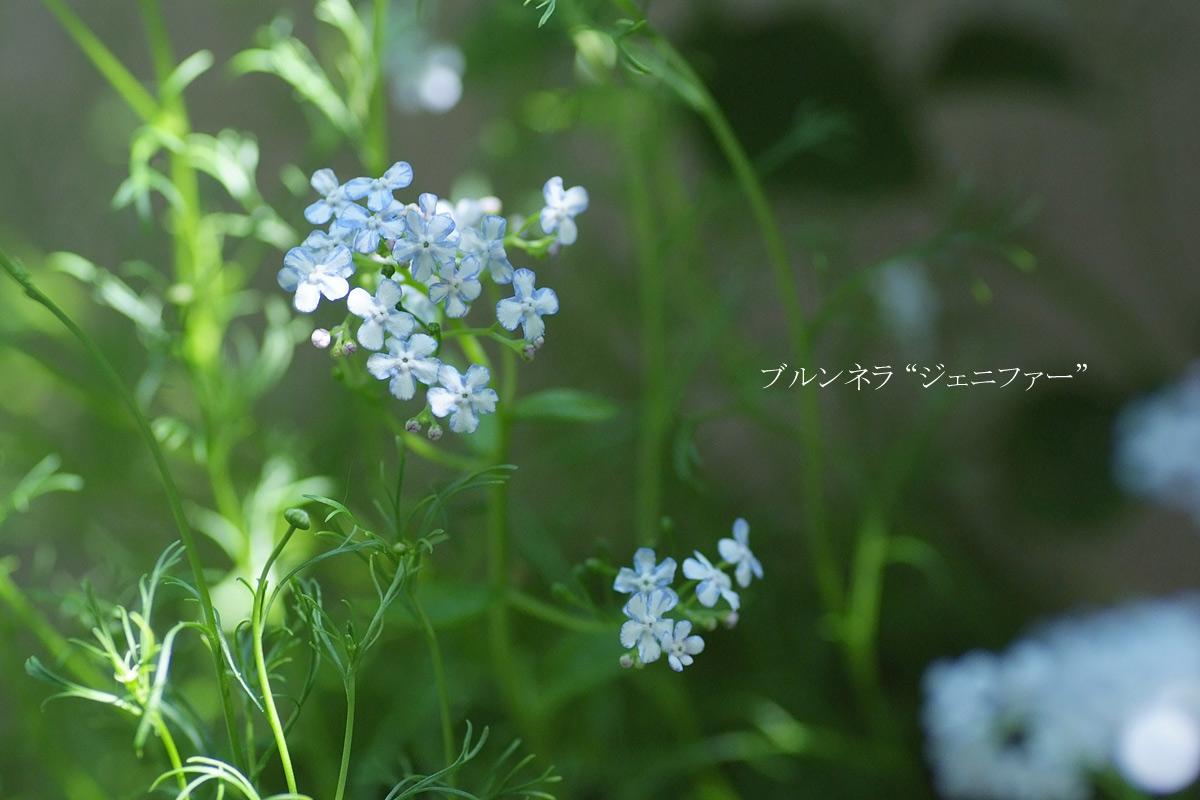 2014_0504_141609-1