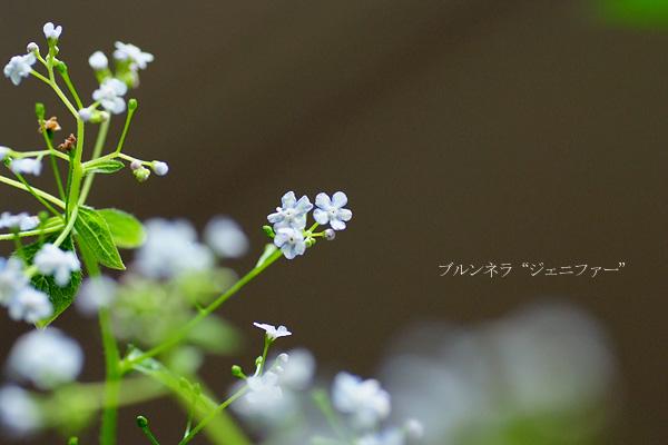 2014_0429_090102-1.jpg